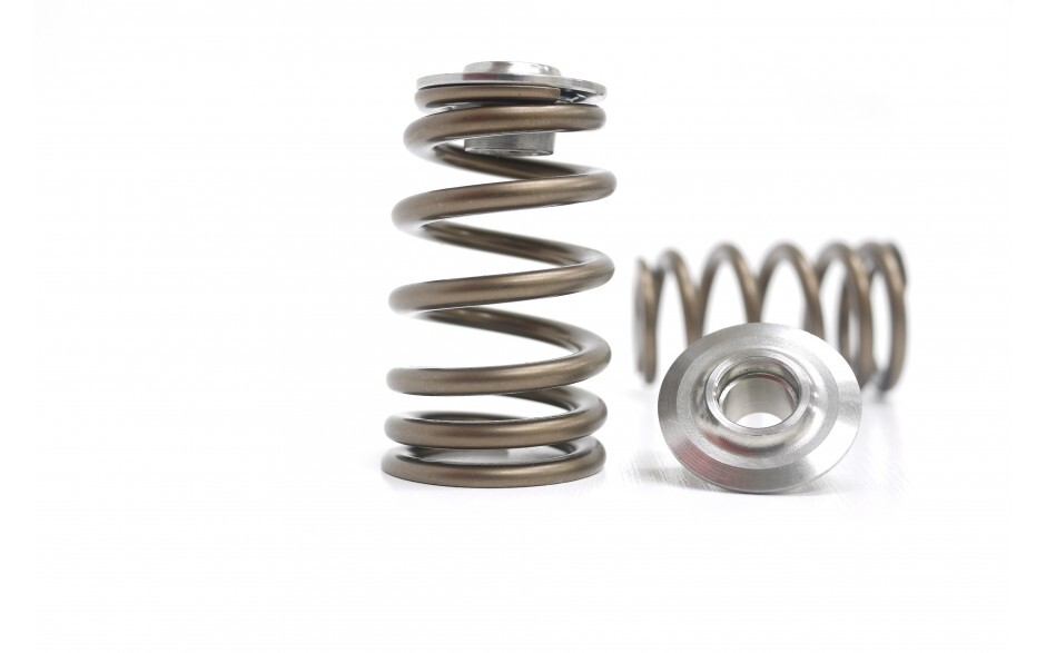 Valve Springs and Titanium Retainer Set (SR20)